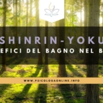 Shinrin-yoku, i benefici del Bagno nel Bosco